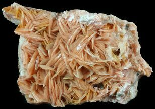 Barite - Fossils For Sale - #51462