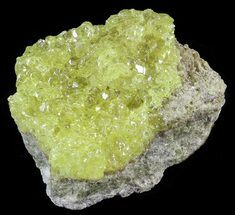 "Buy 3.1"" Sulfur Crystals on Matrix - Bolivia - #51577"
