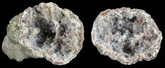 "Buy 2.25"" Keokuk ""Red Rind"" Geode - Iowa - #53392"