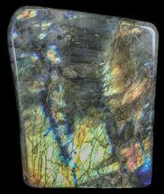 Labradorite - Fossils For Sale - #51531