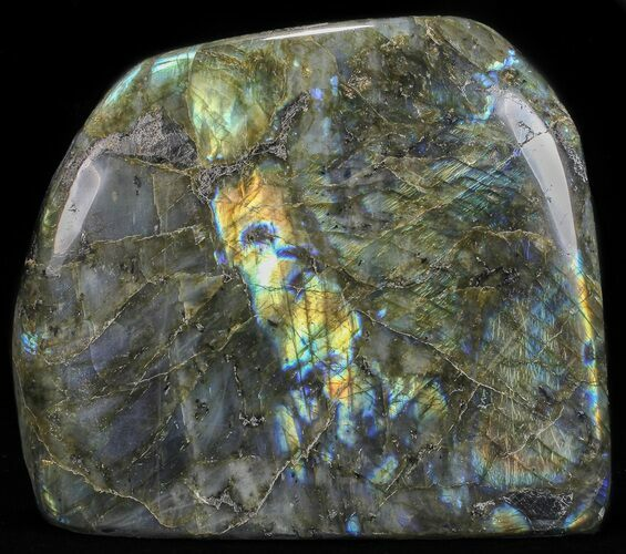 "7"" Flashy Polished Free Form Labradorite - 8 3/4 lbs"