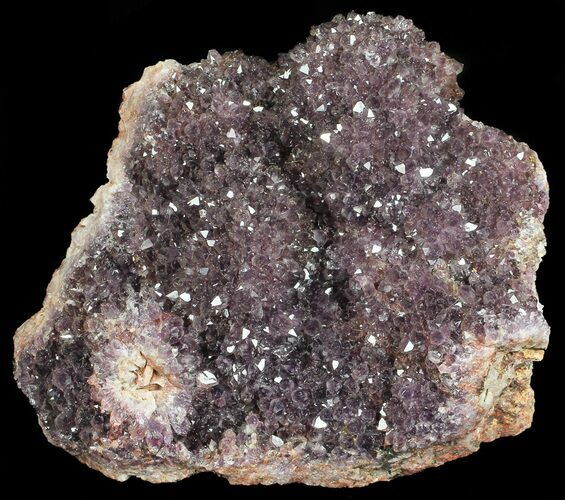 "3.8"" Purple Amethyst Cluster - Turkey"