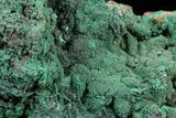"3.6"" Malachite on Matrix - Morocco - #57055-1"