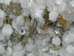 "3.5"" Calcite, Quartz, Pyrite and Fluorite Association - Morocco - #57282-1"