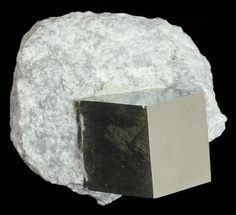 ".55"" Golden Pyrite Cube In Rock - Navajun, Spain For Sale, #57767"