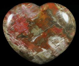 "Buy 4.6"" Colorful, Polished Petrified Wood ""Heart"" - Triassic - #58543"
