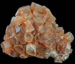 "1.8"" Aragonite Twinned Crystal Cluster - Morocco For Sale, #59789"