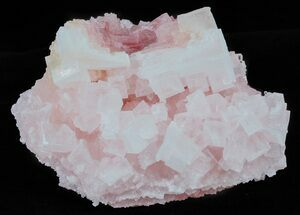 Halite - Fossils For Sale - #61050