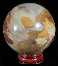 "Buy 2.4"" Colorful Petrified Wood Sphere - Oregon - #61204"