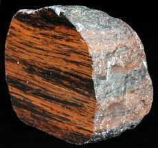 "3.9"" Polished Mahogany Obsidian - Oregon For Sale, #60914"