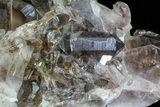 "9.8"" Dark Smoky Quartz Cluster - Large Crystals  - #60925-3"