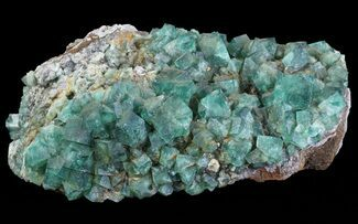 "8.8"" Fluorite & Galena Plate - Rogerley Mine (Special Price) For Sale, #62069"