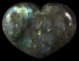 Labradorite - Fossils For Sale - #62937