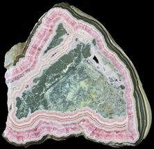 "Buy Bargain, 3.5"" Rhodochrosite Stalactite Slice with Pyrite - Argentina - #63088"