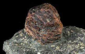 "Huge, 1.9"" Almandine Garnet In Rock - Broken Hill, Australia For Sale, #63308"