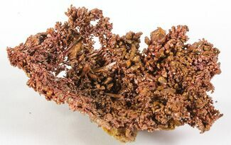 "2.2"" Natural, Native Copper - Morocco For Sale, #64265"