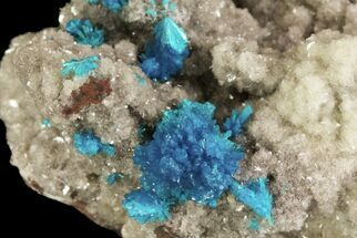 Cavansite on Stilbite - Fossils For Sale - #64815