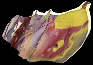 "Buy 8"" Polished Mookaite Jasper Slab - Australia - #65026"
