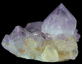 Quartz var Amethyst - Fossils For Sale - #64221