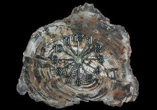 "11.5"" Wide Arizona Petrified Wood Clock For Sale, #66833"