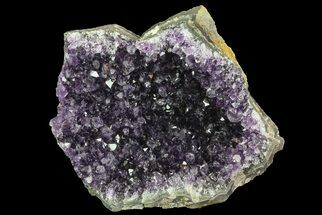 "4.8"" Purple Amethyst Cluster - Uruguay For Sale, #66746"