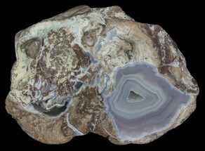 Quartz Geode - Fossils For Sale - #67500