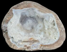 "2"" Crystal Filled Dugway Geode (Polished Half) For Sale, #67481"