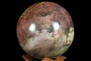 "Buy 3.9"" Colorful Petrified Wood Sphere - Madagascar - #67768"