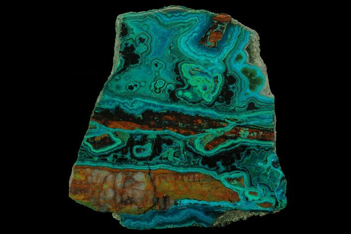 "4"" Polished Chrysocolla & Malachite Slab - Bagdad Mine, Arizona"