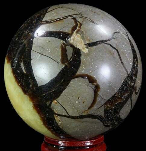 "2.4"" Polished Septarian Sphere - Madagascar"