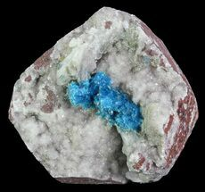 Cavansite on Stilbite - Fossils For Sale - #67797