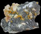 "3.8"" Wulfenite, Barite, Cerussite and Galena Association - Morocco - #68226-1"