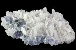 Fluorite - Fossils For Sale - #31587