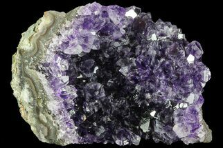 "Buy 2.3"" Purple Amethyst Cluster - Uruguay - #66826"