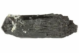 "1.6"" Black Tourmaline (Schorl) Crystal - Namibia For Sale, #69167"
