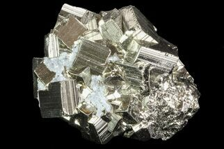 Pyrite - Fossils For Sale - #69585