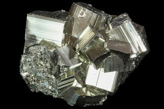 Pyrite - Fossils For Sale - #69597