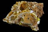 "1.5"" Wulfenite Crystals on Matrix - Mexico - #67723-1"