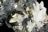 "3.6"" Pyrite, Sphalerite and Quartz Association - Peru - #71379-2"