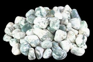 Bulk Polished Tree Agate - 8 ounces For Sale, #74225