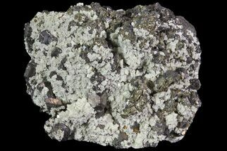 "Buy 2"" Galena, Dolomite and Marcasite - Missouri - #73843"