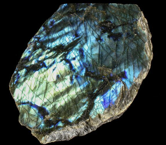 "7.1"" Tall, Single Side Polished Labradorite - Madagascar"