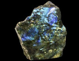 "Buy 7.5"" Tall, Single Side Polished Labradorite - Madagascar - #72574"