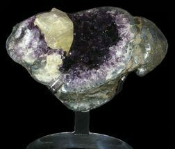 Quartz var. Amethyst - Fossils For Sale - #63120