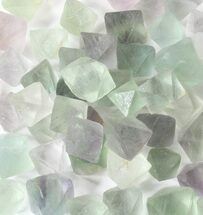 Bulk Green Fluorite Octahedral Crystals - 10 Pack For Sale, #75707
