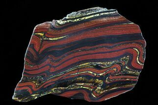 "5.5"" Polished Tiger Iron Stromatolite - (2.7 Billion Years) For Sale, #75860"