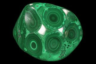 "Buy 3.3"" Polished Malachite - Congo - #76108"