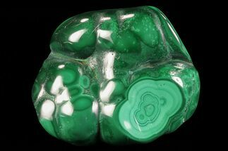 Malachite - Fossils For Sale - #76134