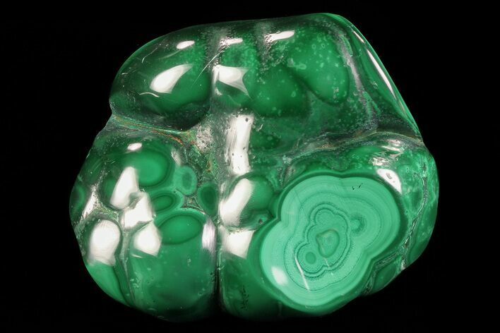 "2.5"" Polished Malachite - Congo"