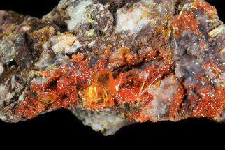 Wulfenite - Fossils For Sale - #76854